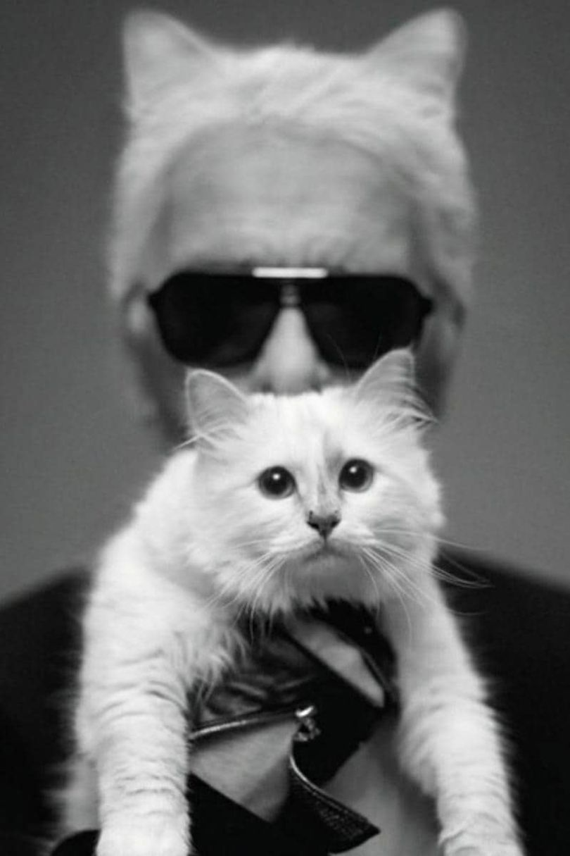 Karl Lagerfeld with his beloved Birman cat, Choupette